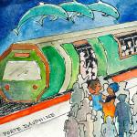 Illustrazione Veronica Menghi