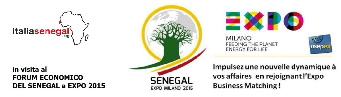 Une délégation d'italiasenegal.org en visite à l'Expo 2015 à l'occasion du Forum économique sur le Sénégal.